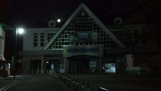 takaosan night 01 650x366 - 【貸切】高尾山ナイトウォーク(夜の散歩)はおすすめ!