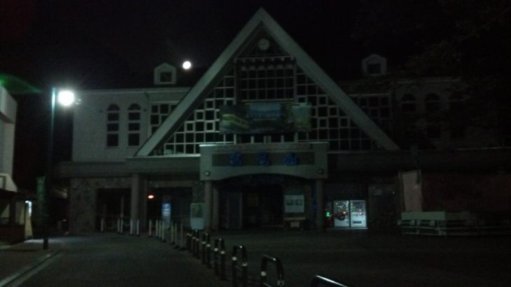 【感染リスクゼロ】高尾山ナイトウォーク(夜の散歩)はおすすめ!