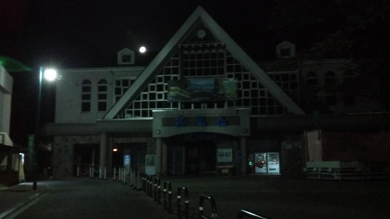 takaosan night 01 - 【貸切】高尾山ナイトウォーク(夜の散歩)はおすすめ!