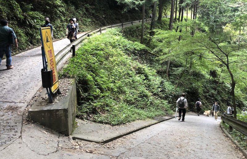 takaosan tokyo holiday 3 - 休日の高尾山登山は人がいっぱい おすすめしません!