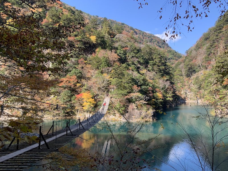 tuketikyou sizuoka1 - 寸又峡紅葉散歩とさわやかハンバーグ